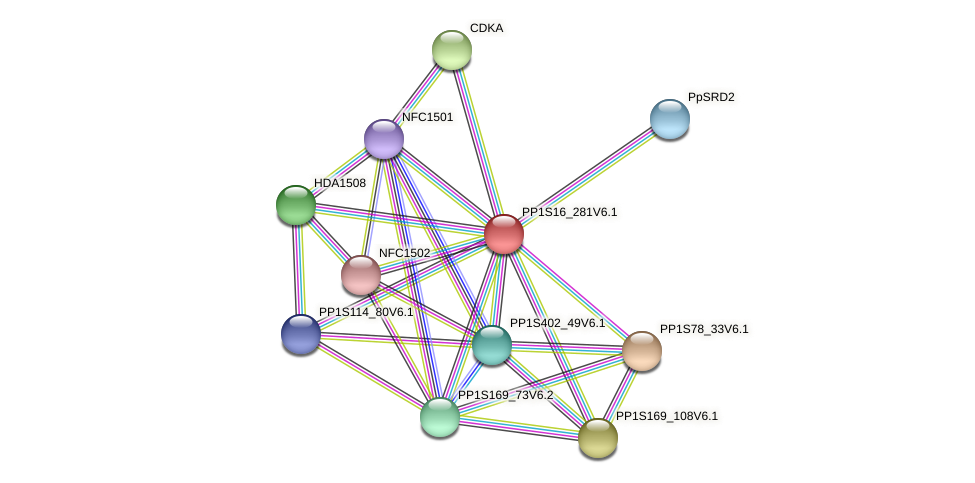 PP1S16_281V6.1 protein (Physcomitrella patens) - STRING interaction network
