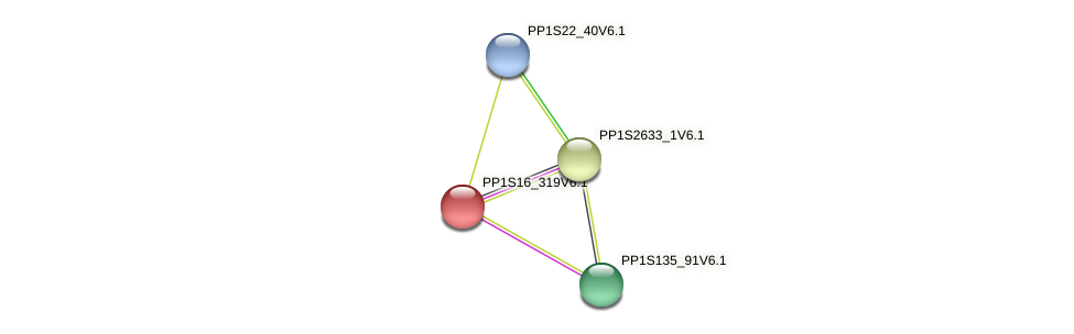 PP1S16_319V6.1 protein (Physcomitrella patens) - STRING interaction network