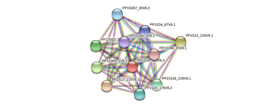 PP1S16_322V6.1 protein (Physcomitrella patens) - STRING interaction network
