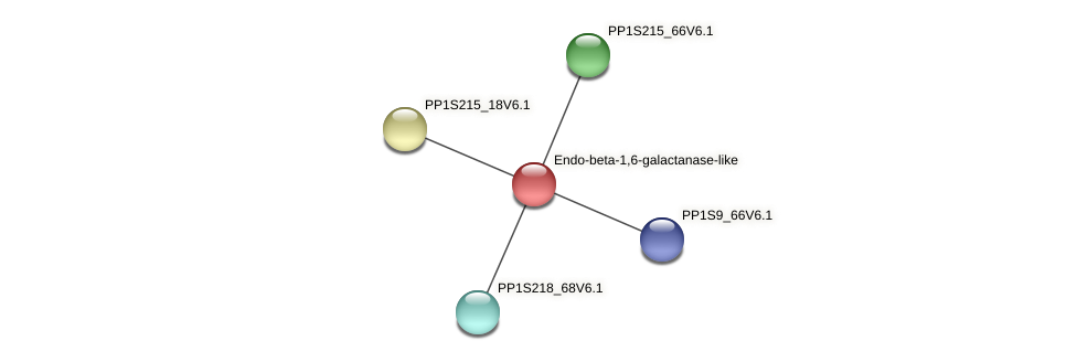 PP1S16_339V6.1 protein (Physcomitrella patens) - STRING interaction network