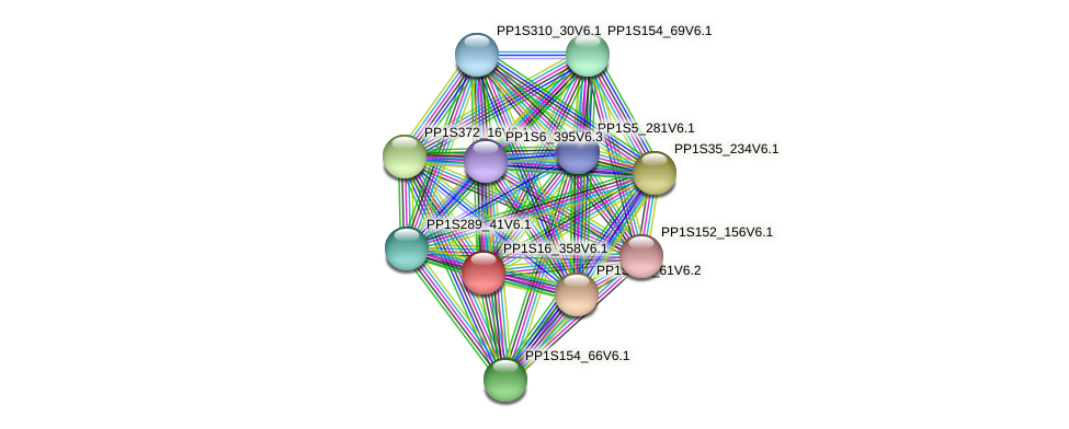 PP1S16_358V6.1 protein (Physcomitrella patens) - STRING interaction network