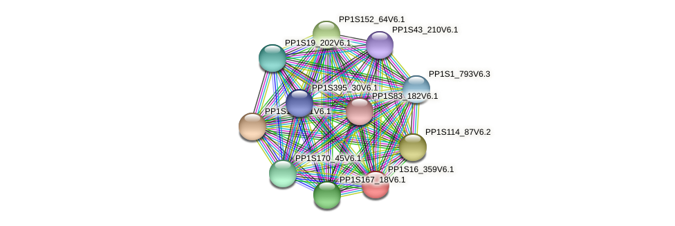 PP1S16_359V6.1 protein (Physcomitrella patens) - STRING interaction network