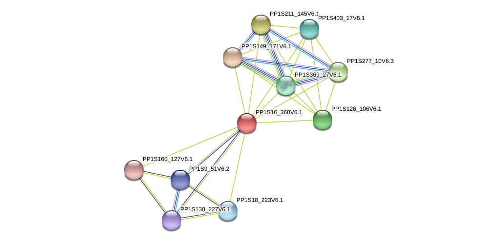 PP1S16_360V6.1 protein (Physcomitrella patens) - STRING interaction network
