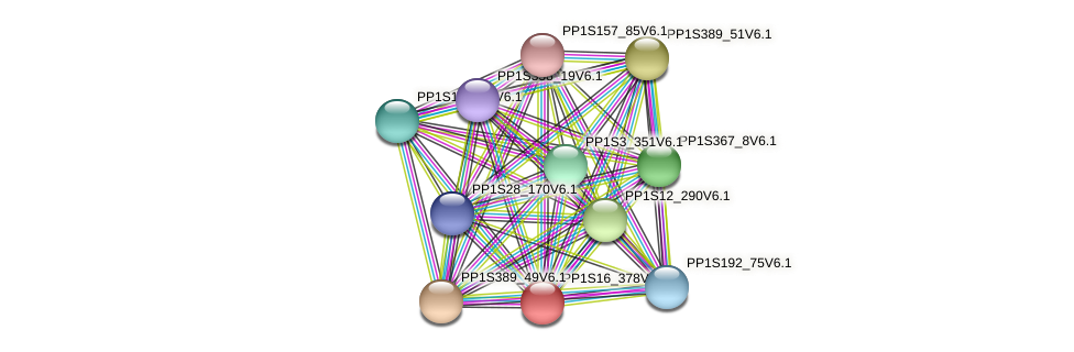 PP1S16_378V6.1 protein (Physcomitrella patens) - STRING interaction network