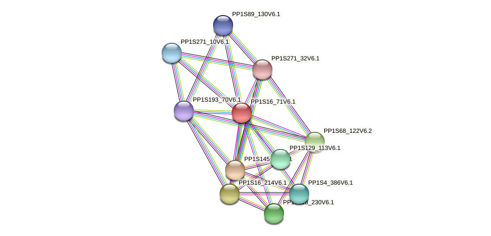PP1S16_71V6.1 protein (Physcomitrella patens) - STRING interaction network