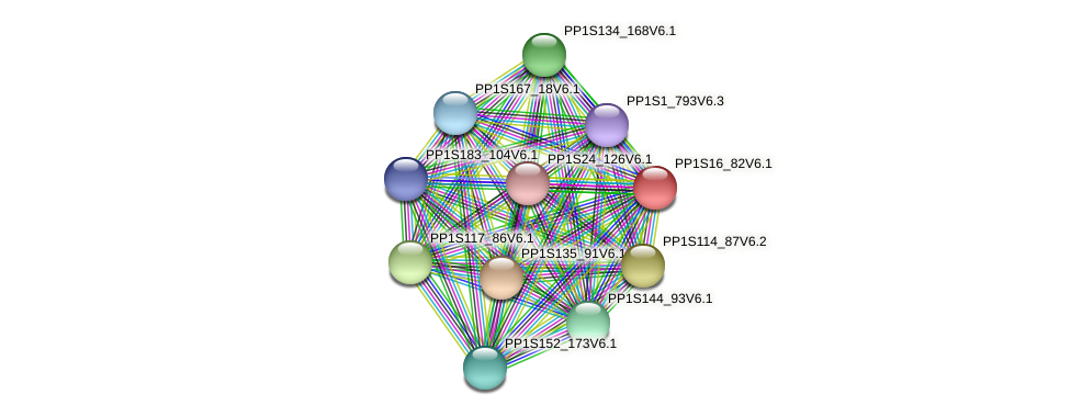 PP1S16_82V6.1 protein (Physcomitrella patens) - STRING interaction network