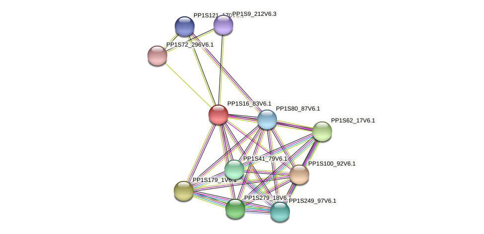 PP1S16_83V6.1 protein (Physcomitrella patens) - STRING interaction network