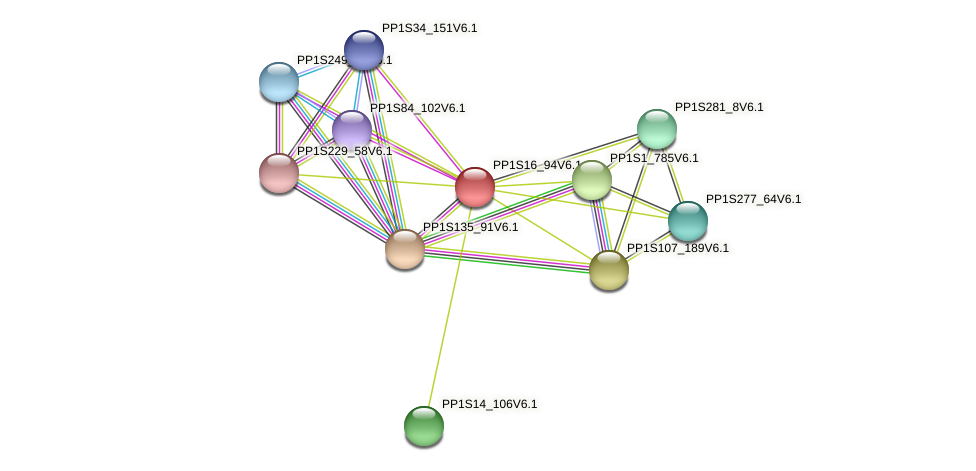 PP1S16_94V6.1 protein (Physcomitrella patens) - STRING interaction network