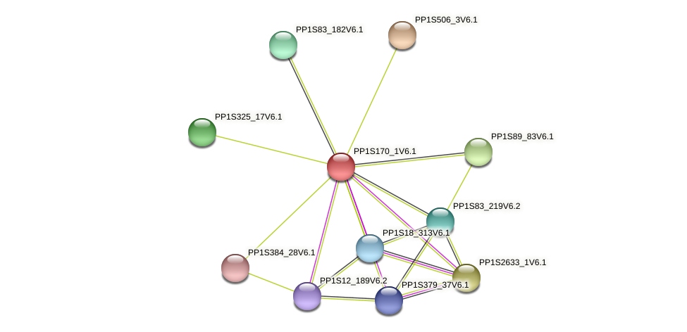 PP1S170_1V6.1 protein (Physcomitrella patens) - STRING interaction network