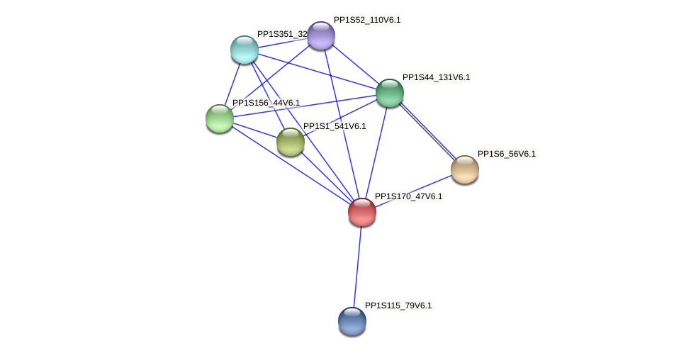 PP1S170_47V6.1 protein (Physcomitrella patens) - STRING interaction network