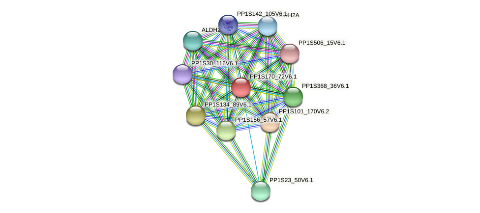 PP1S170_72V6.1 protein (Physcomitrella patens) - STRING interaction network