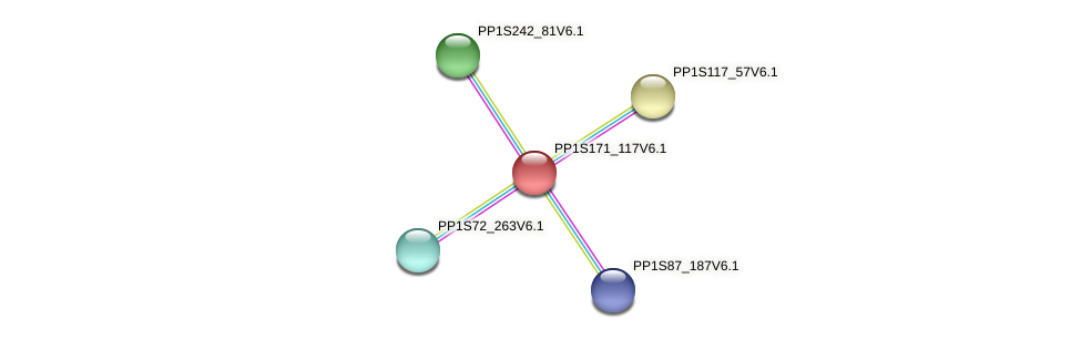 PP1S171_117V6.1 protein (Physcomitrella patens) - STRING interaction network