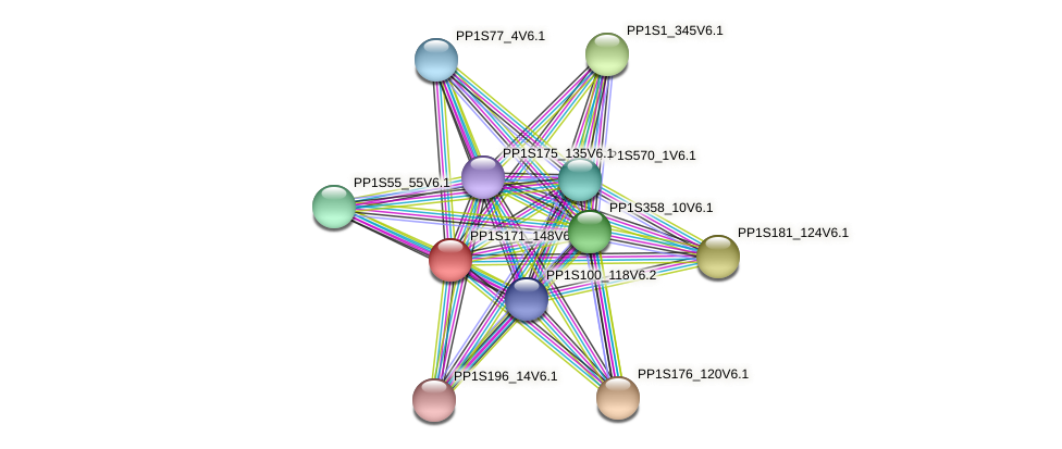 PP1S171_148V6.1 protein (Physcomitrella patens) - STRING interaction network