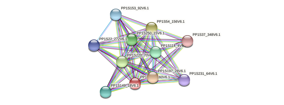 PP1S171_160V6.1 protein (Physcomitrella patens) - STRING interaction network