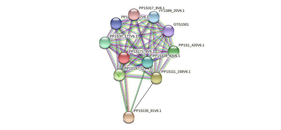 PP1S171_9V6.1 protein (Physcomitrella patens) - STRING interaction network