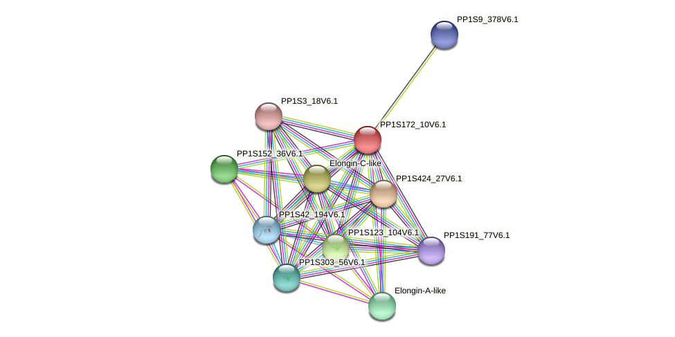 PP1S172_10V6.1 protein (Physcomitrella patens) - STRING interaction network
