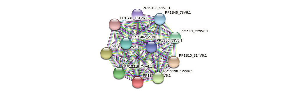 PP1S172_21V6.1 protein (Physcomitrella patens) - STRING interaction network