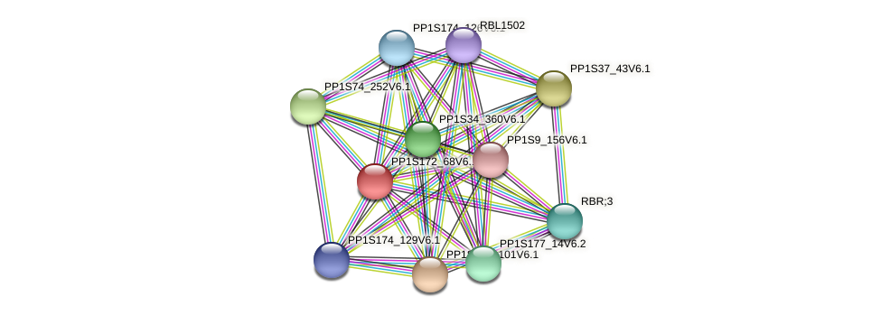 PP1S172_68V6.1 protein (Physcomitrella patens) - STRING interaction network