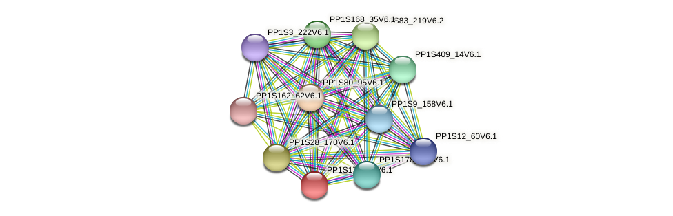 PP1S172_75V6.1 protein (Physcomitrella patens) - STRING interaction network