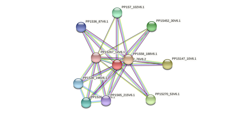PP1S172_76V6.2 protein (Physcomitrella patens) - STRING interaction network