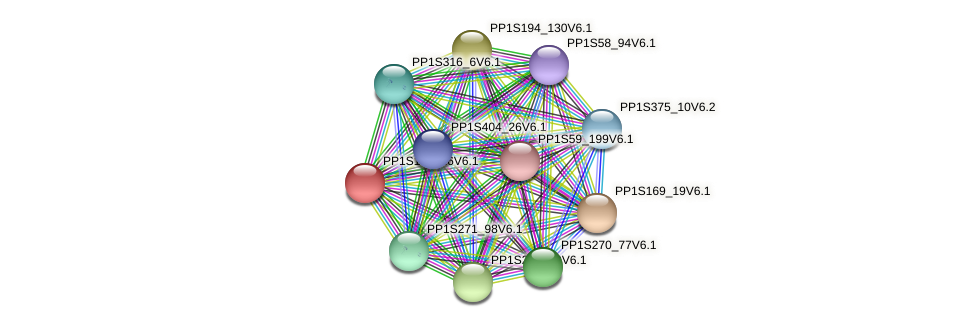 PP1S173_16V6.1 protein (Physcomitrella patens) - STRING interaction network