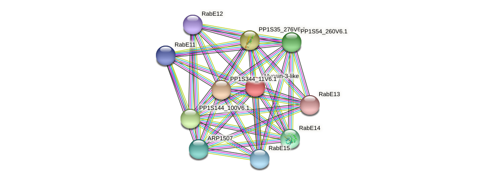 PP1S174_120V6.1 protein (Physcomitrella patens) - STRING interaction network