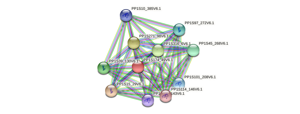 PP1S174_49V6.1 protein (Physcomitrella patens) - STRING interaction network