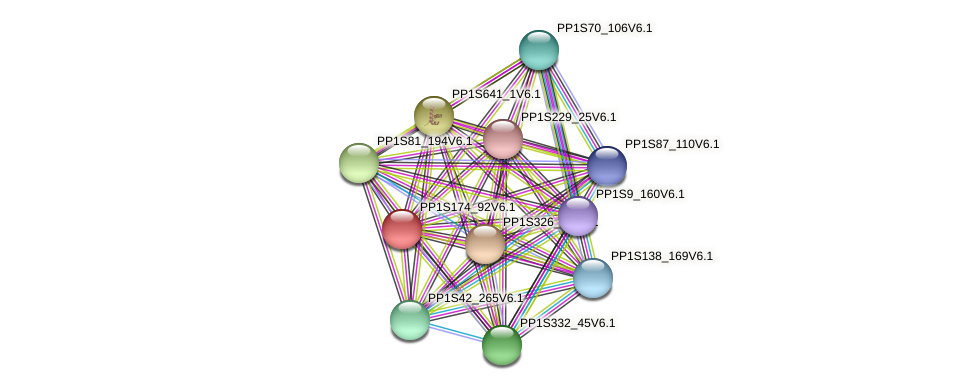 PP1S174_92V6.1 protein (Physcomitrella patens) - STRING interaction network