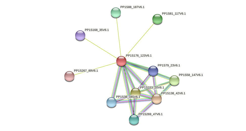 PP1S176_123V6.1 protein (Physcomitrella patens) - STRING interaction network