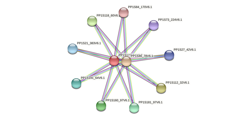 PP1S177_14V6.2 protein (Physcomitrella patens) - STRING interaction network