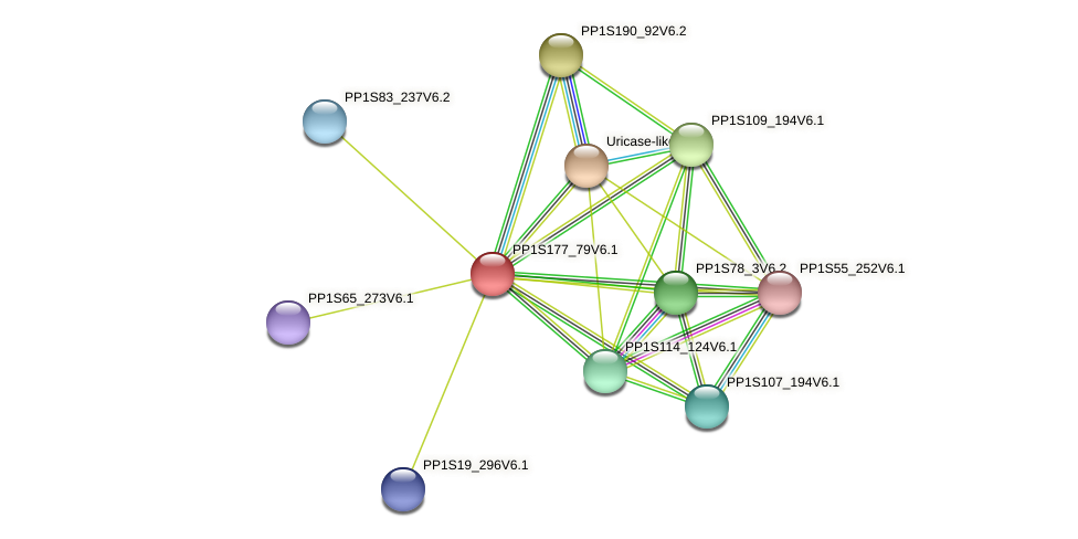 PP1S177_79V6.1 protein (Physcomitrella patens) - STRING interaction network