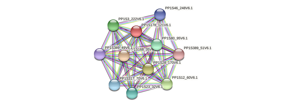 PP1S178_121V6.1 protein (Physcomitrella patens) - STRING interaction network