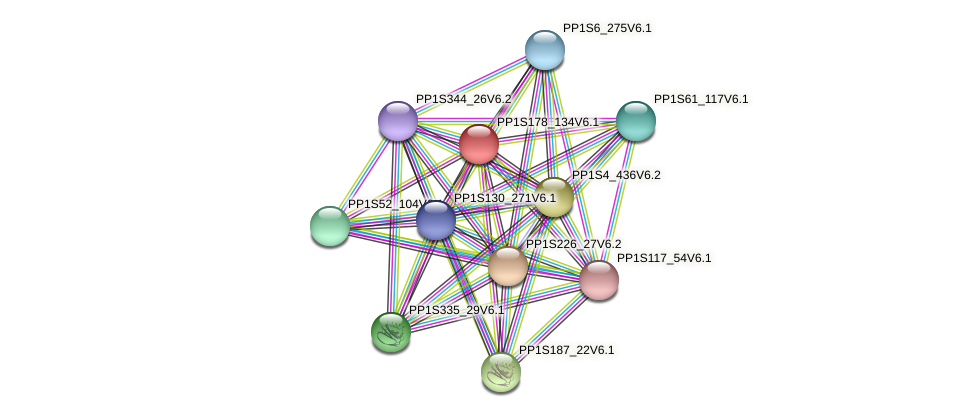 PP1S178_134V6.1 protein (Physcomitrella patens) - STRING interaction network