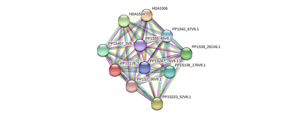 PP1S178_145V6.1 protein (Physcomitrella patens) - STRING interaction network