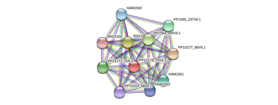 PP1S178_70V6.1 protein (Physcomitrella patens) - STRING interaction network