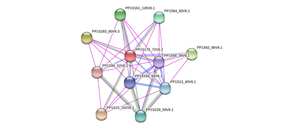 PP1S178_72V6.1 protein (Physcomitrella patens) - STRING interaction network