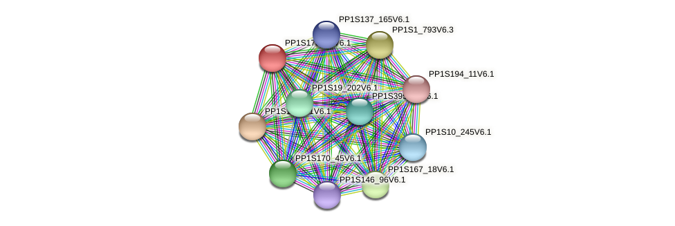 PP1S178_83V6.1 protein (Physcomitrella patens) - STRING interaction network