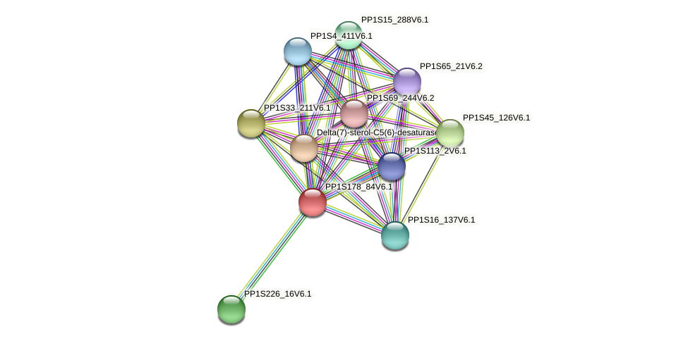 PP1S178_84V6.1 protein (Physcomitrella patens) - STRING interaction network