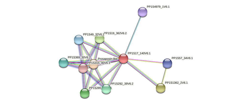 PP1S17_140V6.1 protein (Physcomitrella patens) - STRING interaction network