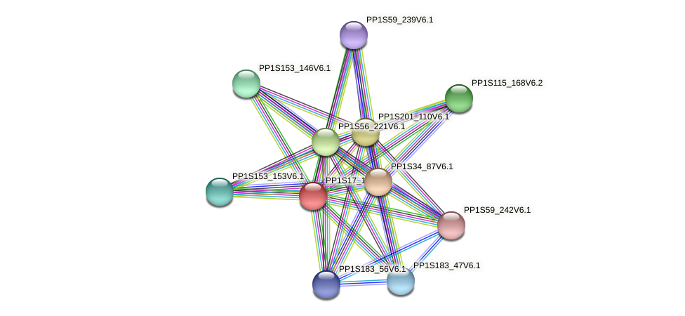 PP1S17_154V6.1 protein (Physcomitrella patens) - STRING interaction network
