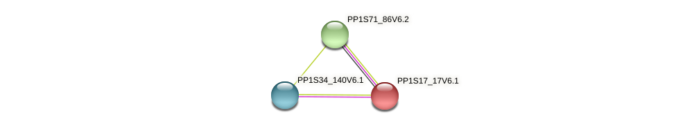 PP1S17_17V6.1 protein (Physcomitrella patens) - STRING interaction network