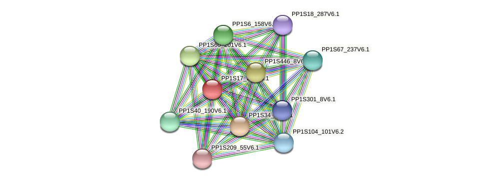 PP1S17_208V6.1 protein (Physcomitrella patens) - STRING interaction network