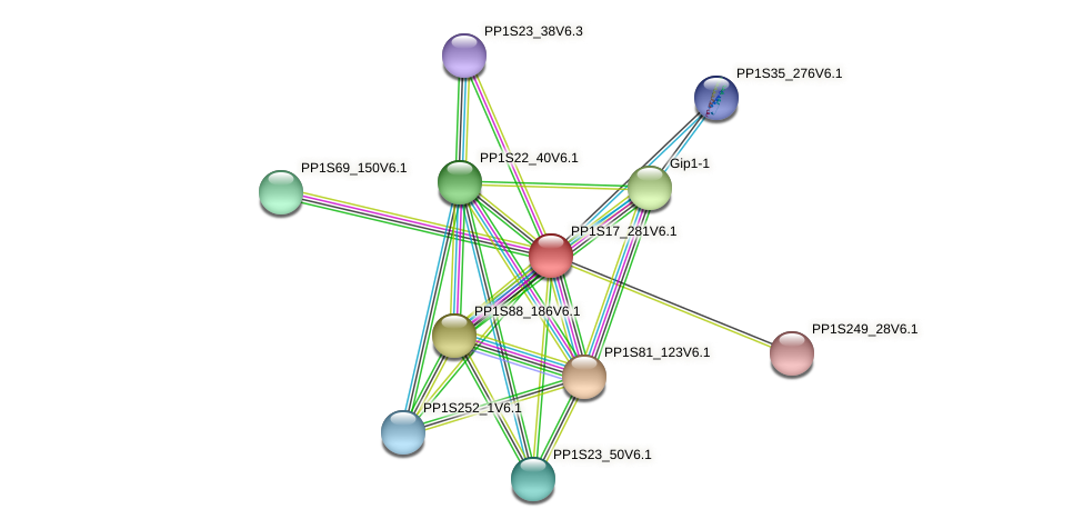 PP1S17_281V6.1 protein (Physcomitrella patens) - STRING interaction network