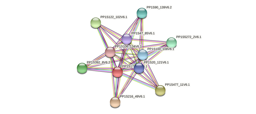 PP1S17_285V6.1 protein (Physcomitrella patens) - STRING interaction network