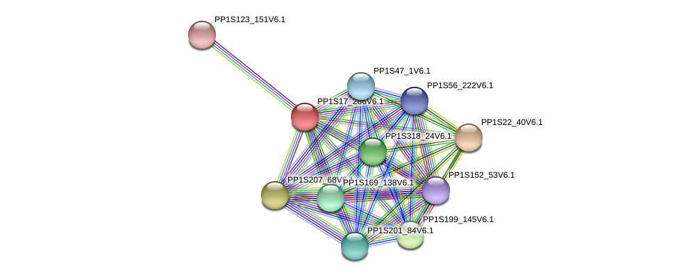 PP1S17_286V6.1 protein (Physcomitrella patens) - STRING interaction network