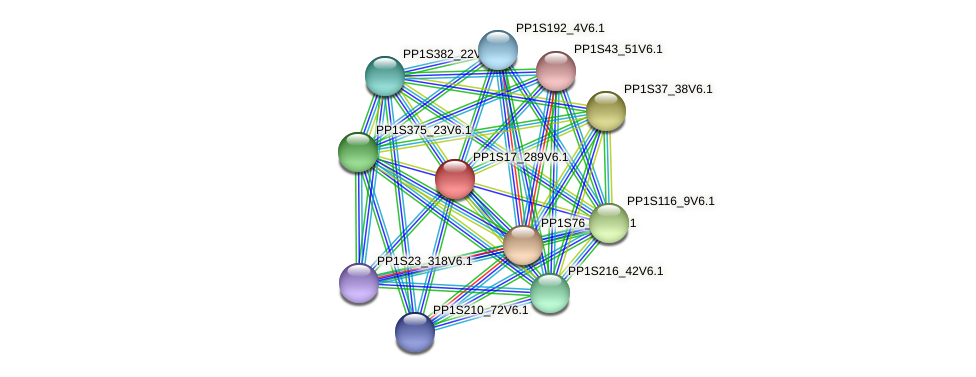 PP1S17_289V6.1 protein (Physcomitrella patens) - STRING interaction network