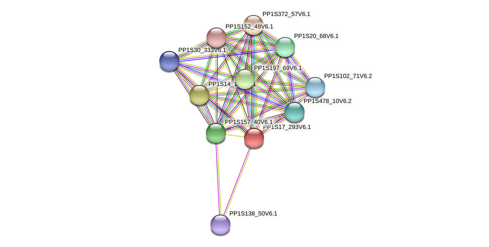 PP1S17_293V6.1 protein (Physcomitrella patens) - STRING interaction network