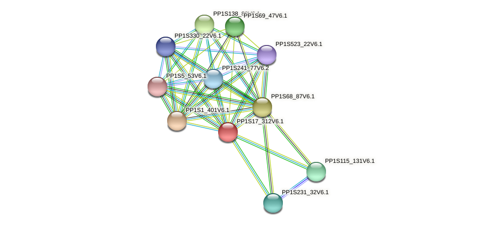 PP1S17_312V6.1 protein (Physcomitrella patens) - STRING interaction network
