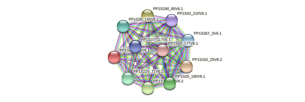 PP1S17_341V6.1 protein (Physcomitrella patens) - STRING interaction network