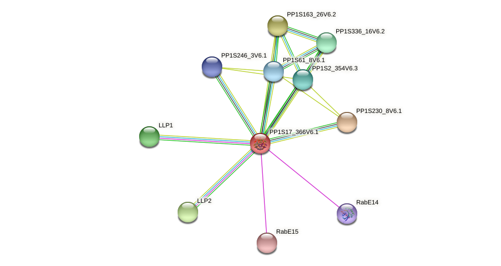 PP1S17_366V6.1 protein (Physcomitrella patens) - STRING interaction network